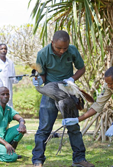 Olivier Nsengimana, 30 ans, Rwanda