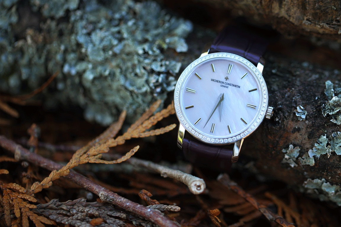 WACHEREN CONSTANTIN watch - Traditionnelle small model - White gold set with diamonds - White mother-of pearl dial - Quartz movement - Purple alligator strap